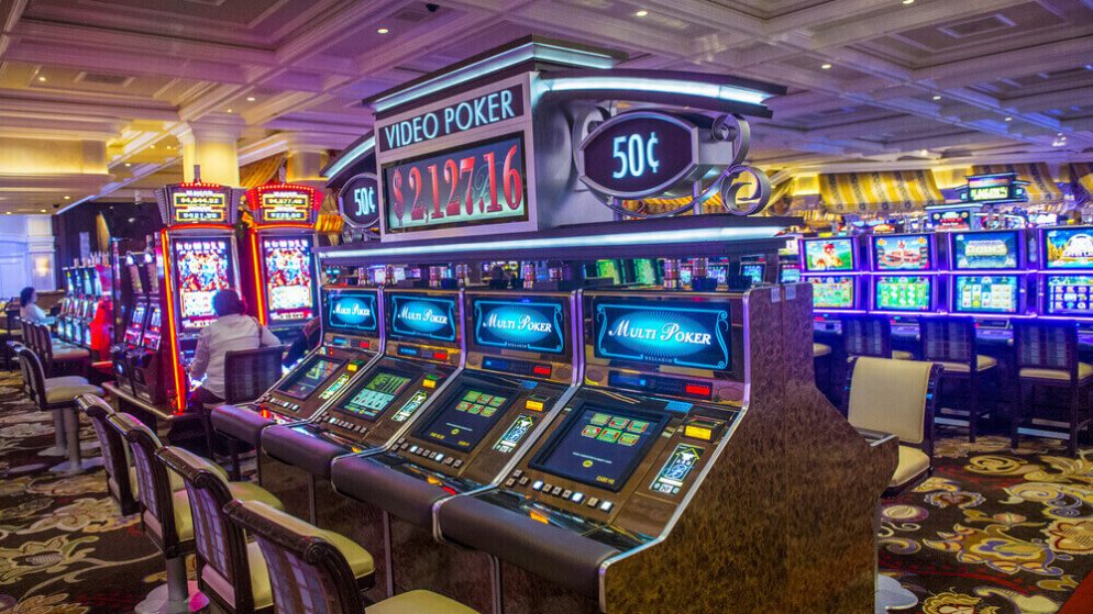 Your Next Jackpot Slot Win– Get $1600 to Spin for Free!